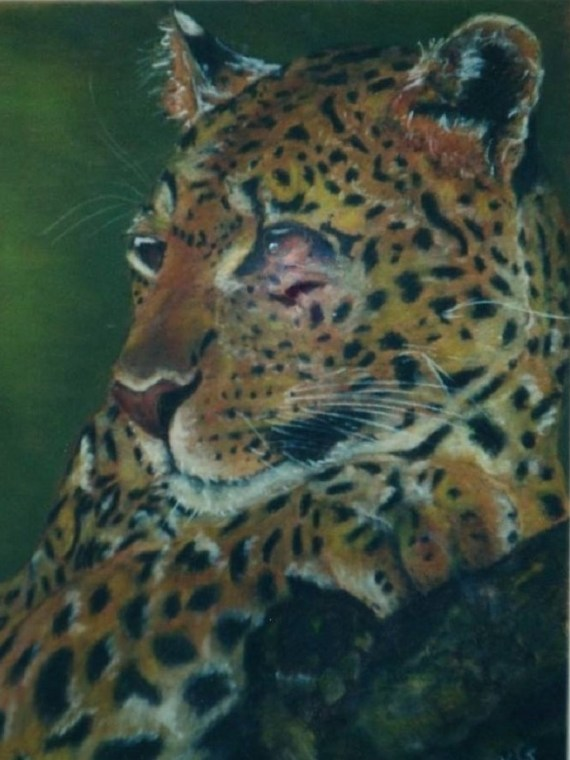 Leopard - chalk pastels - Kelly Goss Art