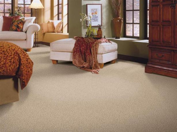 Carpet Ideas Soft Cool Premiere