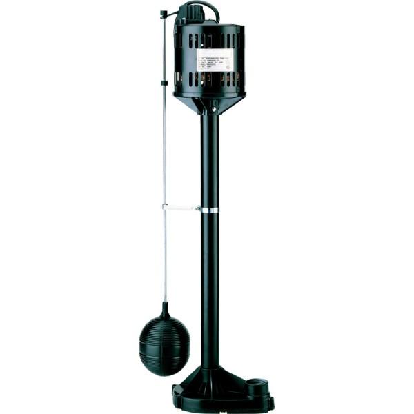 Simer Sump pump at Kelly Lake