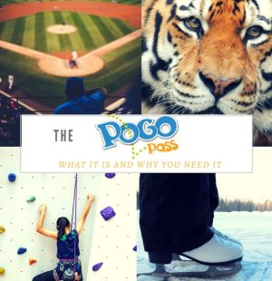Pogo pass guide. What you need to know and why you need it. Learn more at www.kellyluvs.com