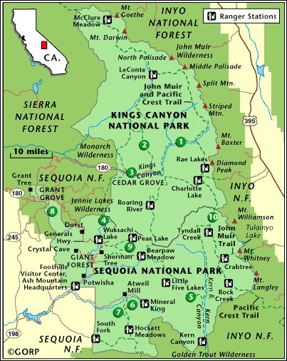 Tips for Visiting Kings Canyon Sequoia National Park from kellyluvs.com