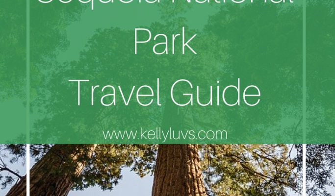Guide to visiting Kings Canyon and Sequoia National Park. Read more at www.kellyluvs.com