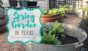 Spring Garden in Texas