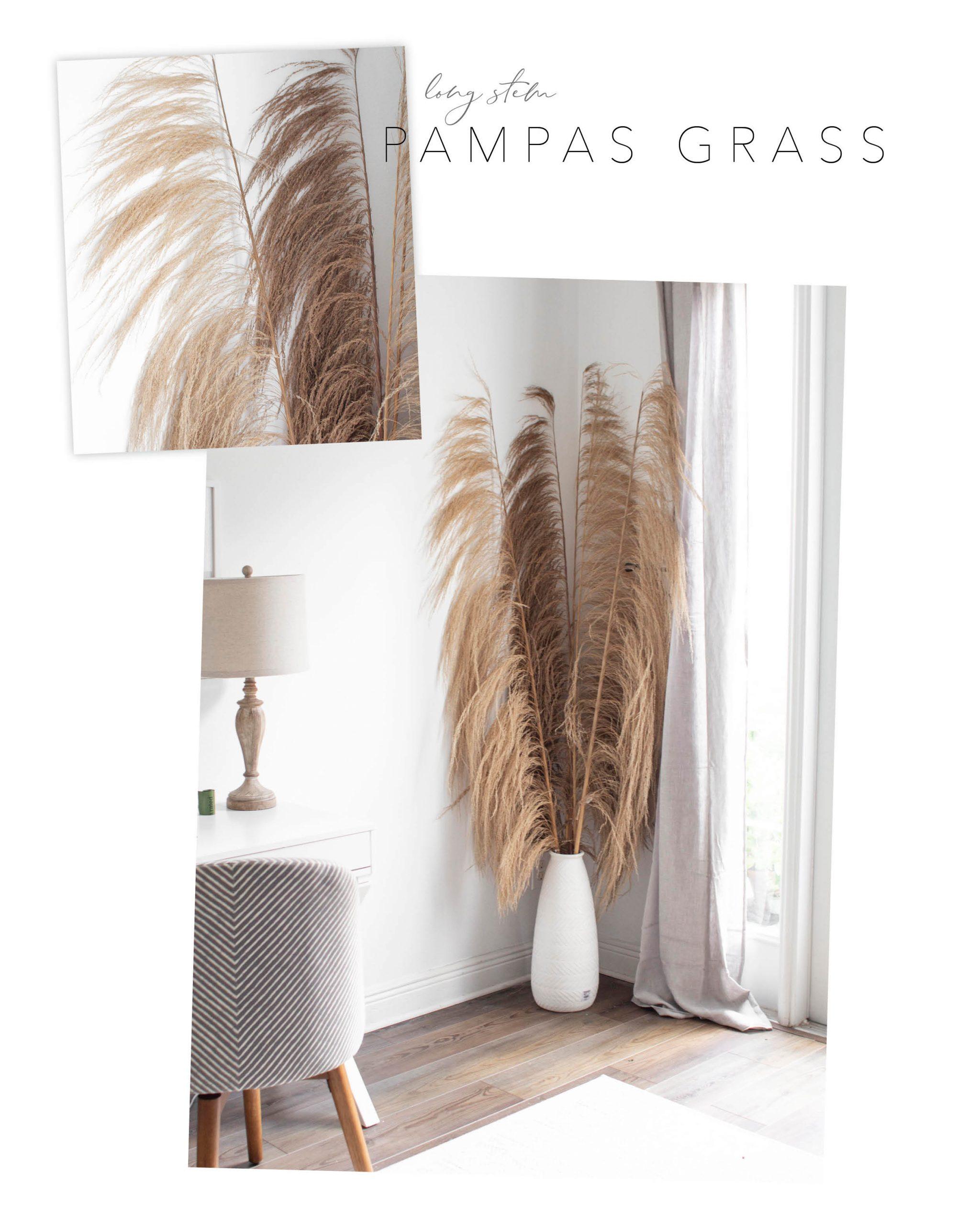 Pier 1 dupe tall pampas grass