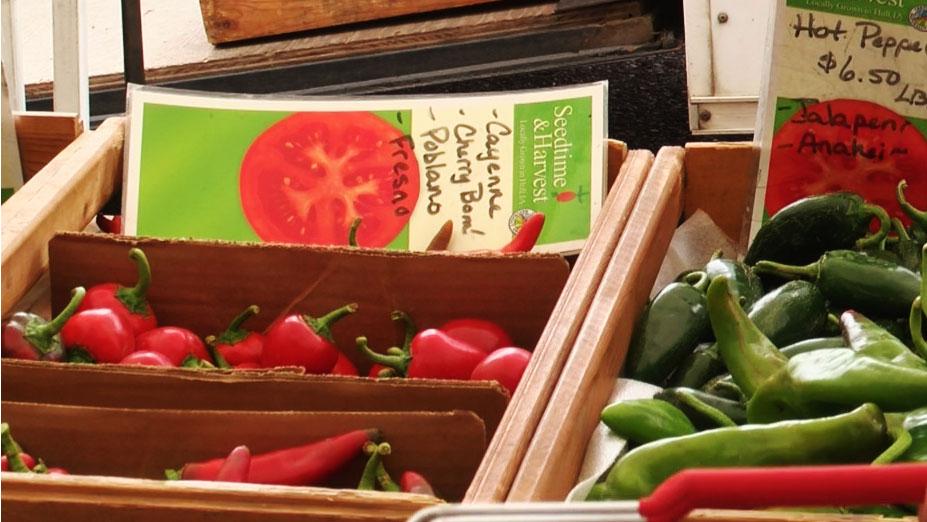 KELO Farmers Market