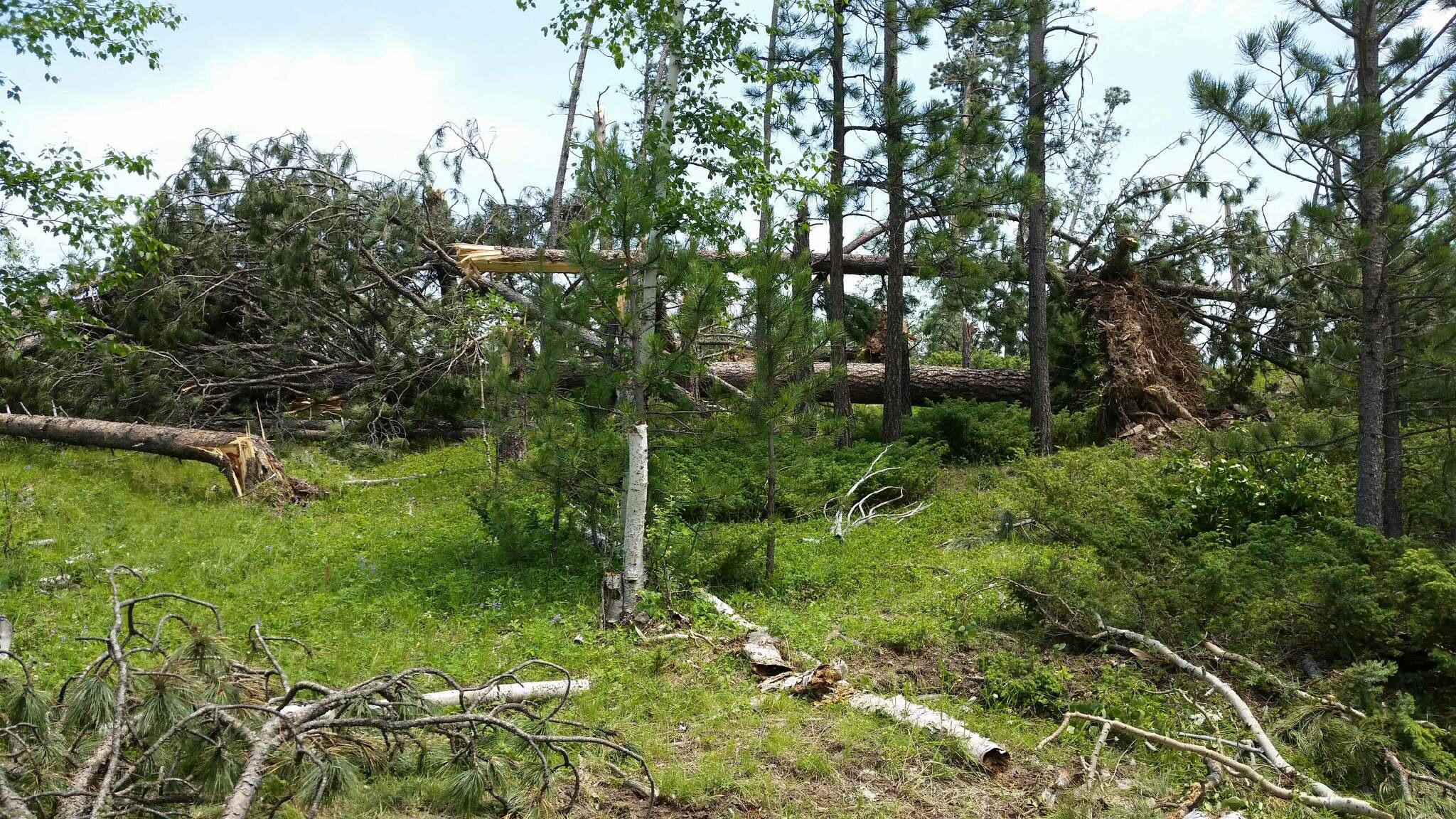 KELO Black Hills tornado damage