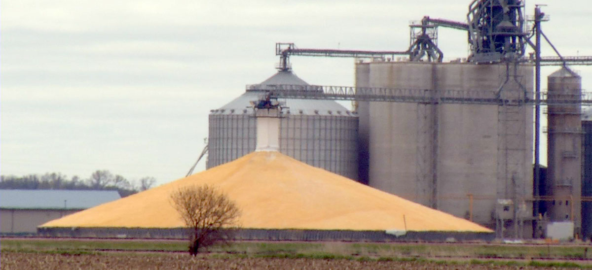 Monday Ag Markets, August 6