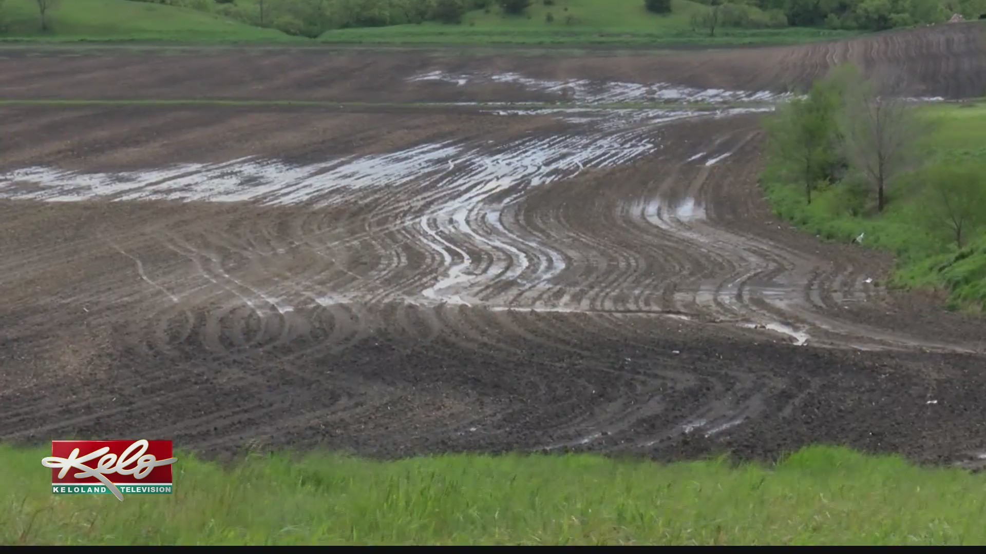 Farmers in KELOLAND desperate for drier weather