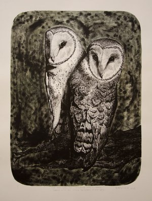Barn-Owl-Pair-KMcNickle-Lithograph
