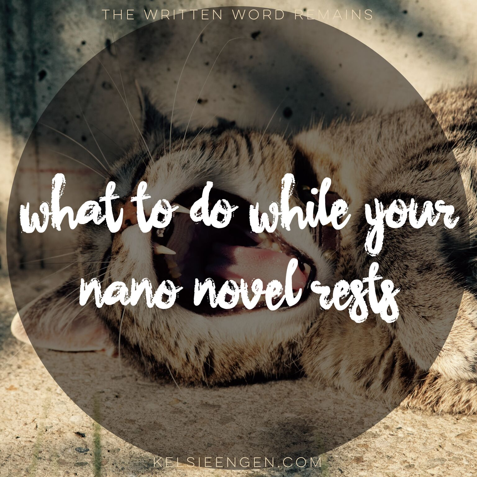"What to do While Your NaNo Novel ""rests"""