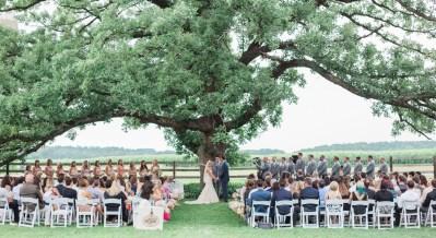 brighton wedding photographer wedding ceremony under big oak tree