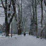 Salju tebal di Harz
