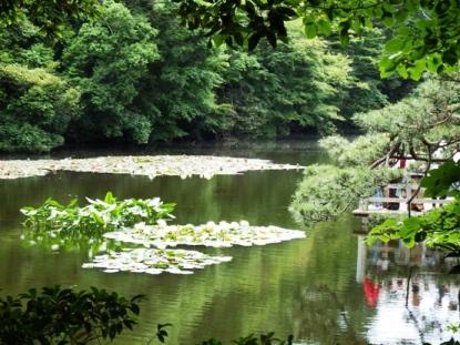 Inner garden Kuil Meiji