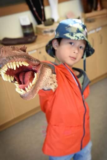 加拿大亞伯達-尋找恐龍之旅 (19)