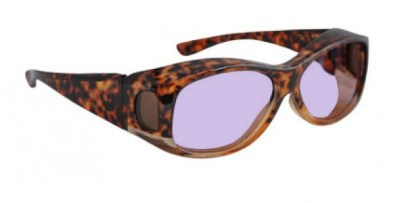 Model 33 Euro Fitover Glassworking Safety Glasses - Phillips 202 ACE - Tortoise