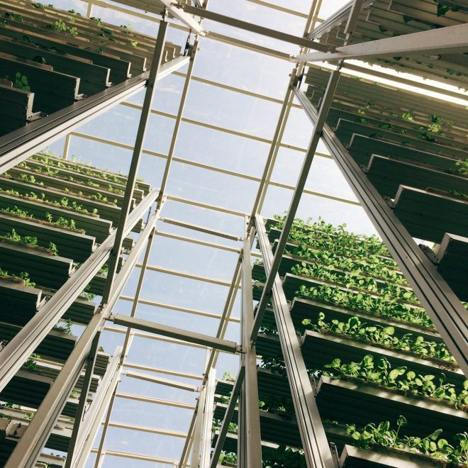 Sky Green Vertical Farming