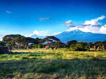 kenia-afrika-reise-bilder-010