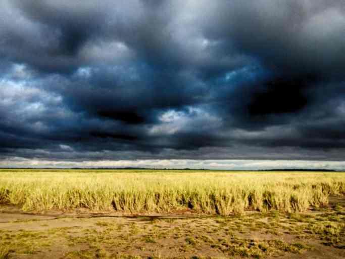 kenia-afrika-reise-bilder-029