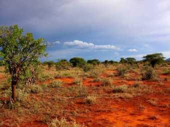 kenia-afrika-reise-bilder-152