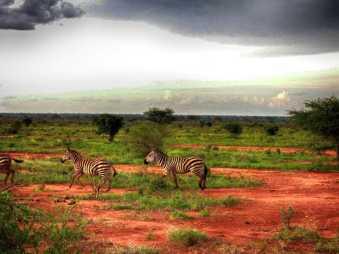 kenia-afrika-reise-bilder-173