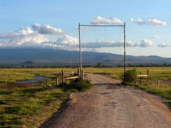Eingang zur Serengeti Kenia