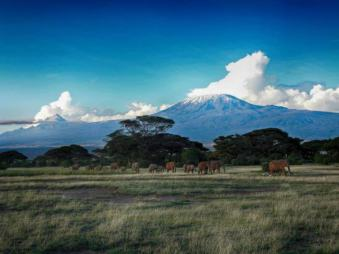 kenia-afrika-reise-bilder-414