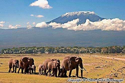 Amboseli Rote - Kenia Komfort safari und Flitterwochen 13 tage ab Nairobi