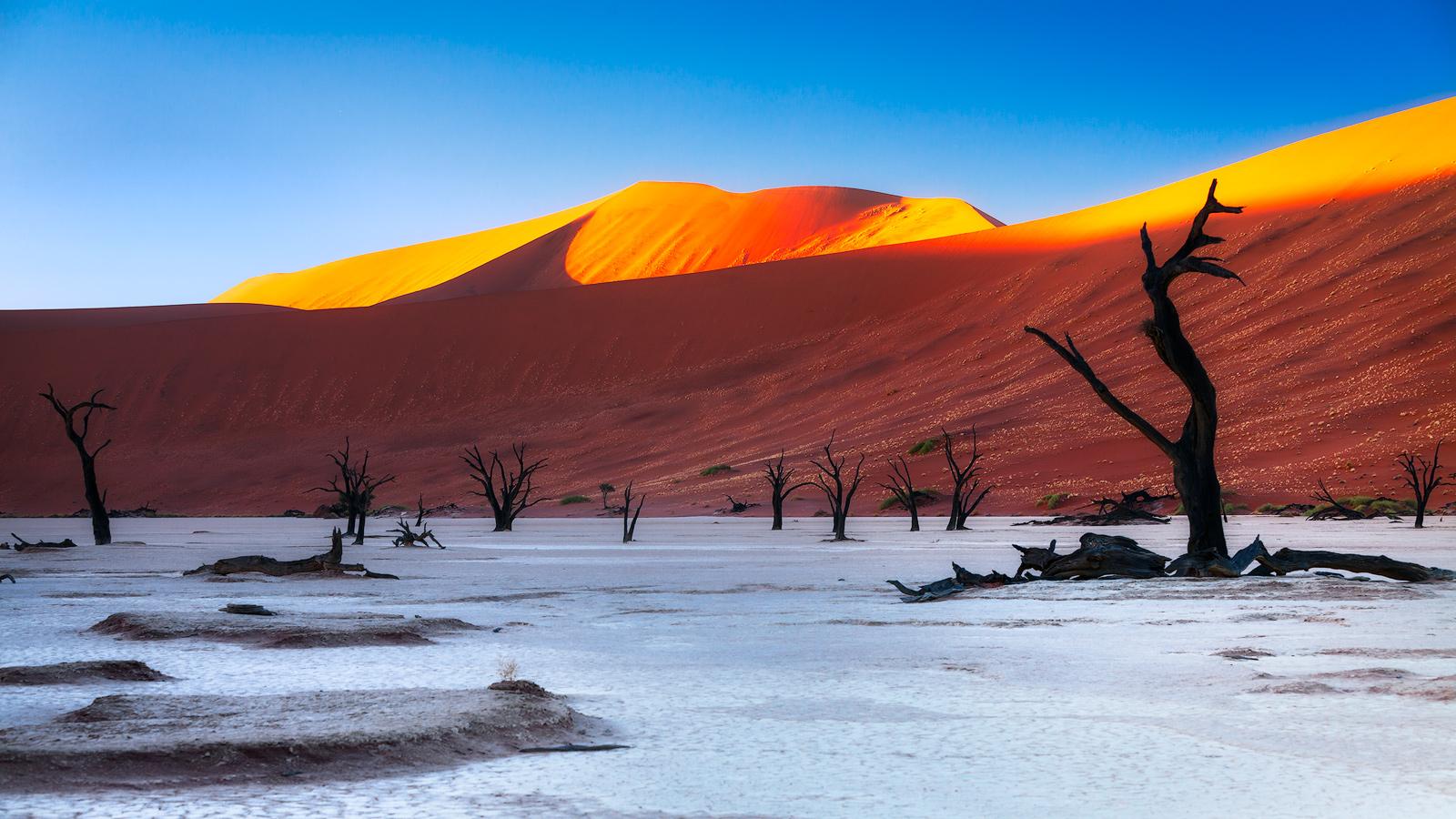 Tall Tree In Deadvlei Namibia Ken Koskela Photography LLC