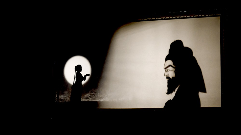 medium resolution of The Science of Shadow Puppets