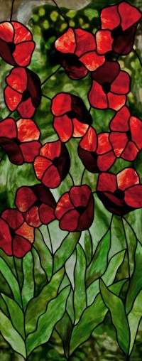 Red Poppies PDF