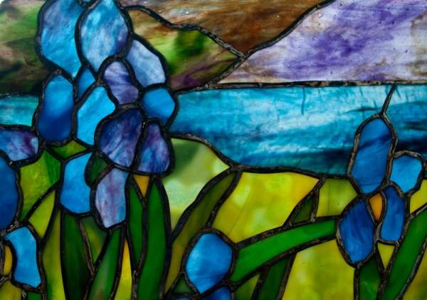 Scene with Irises close up