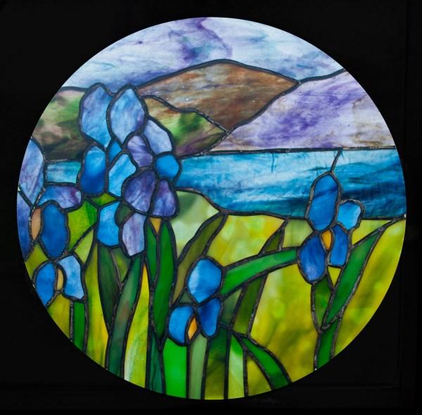 Scene with Irises