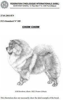 Chow Chow standard forside Kennel Hjelme