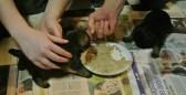 Kennel Hjelmes Border Terrier hvalpe spiser