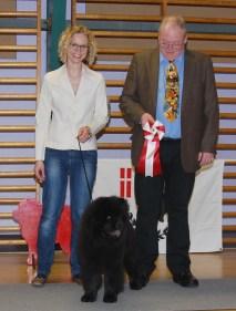 Kennel Hjelmes chow chow BIR baby i Jægerspris 2011. Piuk Chow Possesses Black Passion