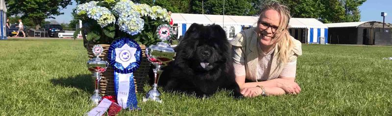 Chow Chow Piuk Chow Possesses Black Passion, Stine Hjelme Best In Show Roskilde