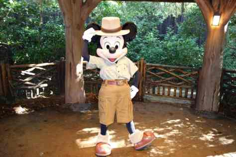 Mickey Animal Kingdom 2012 Camp Minnie Mickey