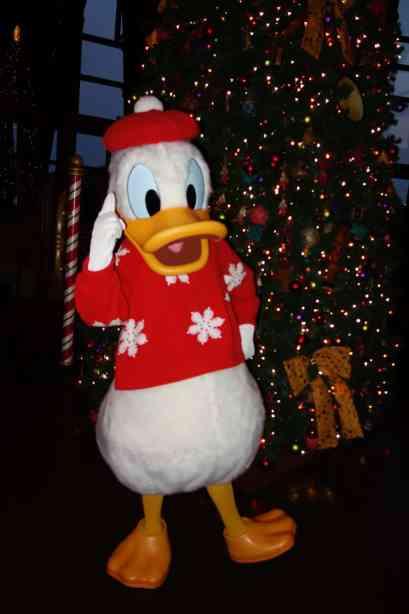 Animal Kingdom Lodge Christmas 2012