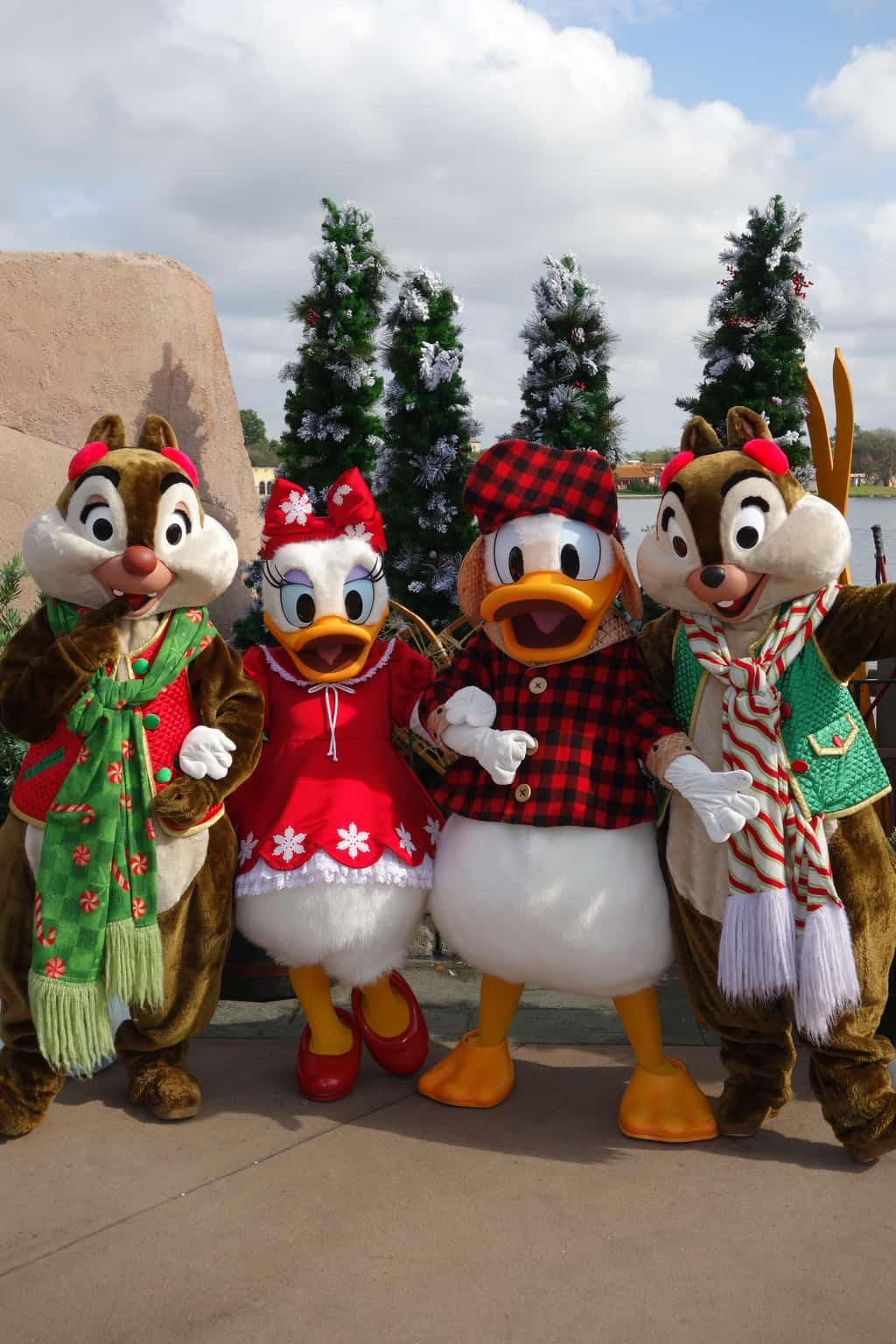 Donald Duck at Epcot -...