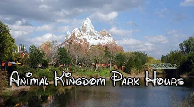 disney world park hours, animal kingdom park hours