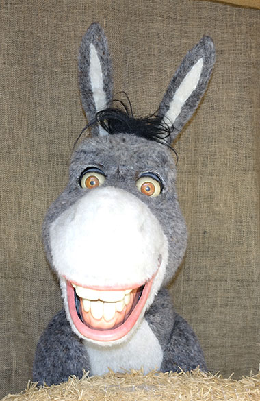 Donkey from Shrek meet and greet at Univeral Orlando