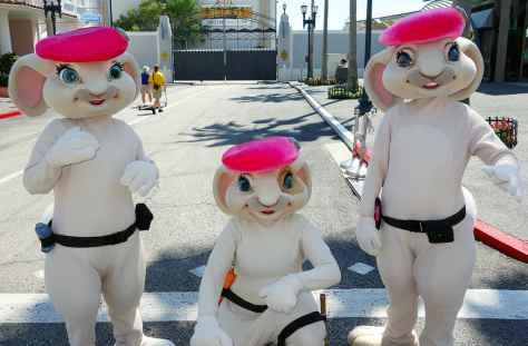 Pink Berets