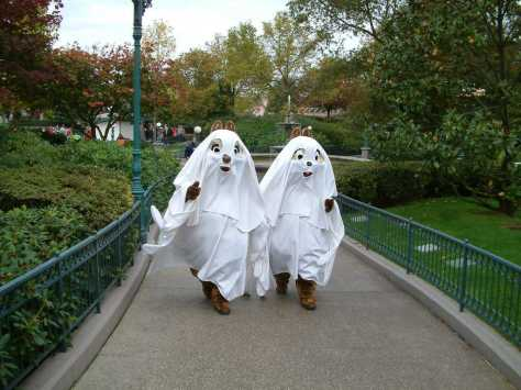chipndale were dressed as ghosts for many years in these outfits