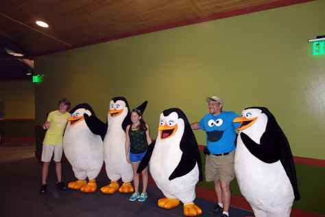 Busch Gardens Tampa Madagascar Characters Penguins