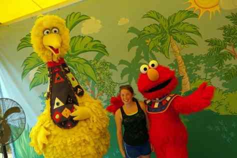 Busch Gardens Tampa Sesame Street Characters  Big Bird Elmo (2)