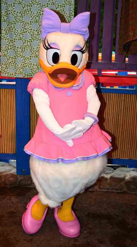 Daisy appearing in her pink dress in Animal Kingdom's Discovery Island