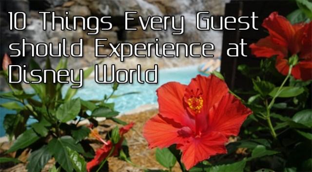 10 great Walt Disney World Attractions