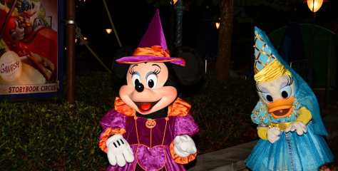 Mickey's Not So Scary Halloween Party 2014 Minnie and Daisy