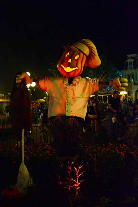 Mickey's Not So Scary Halloween Party 2014 (120)
