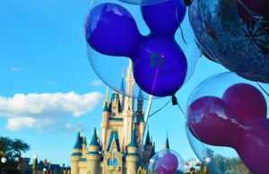 Disney World premium parking